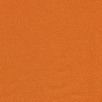 <!-- 015 -->Bear Essentials Orange PBESS3663O