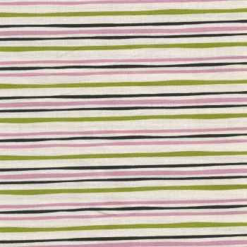 Wildflower Garden Spring Beauty Stripe CX7477-PRMS-D