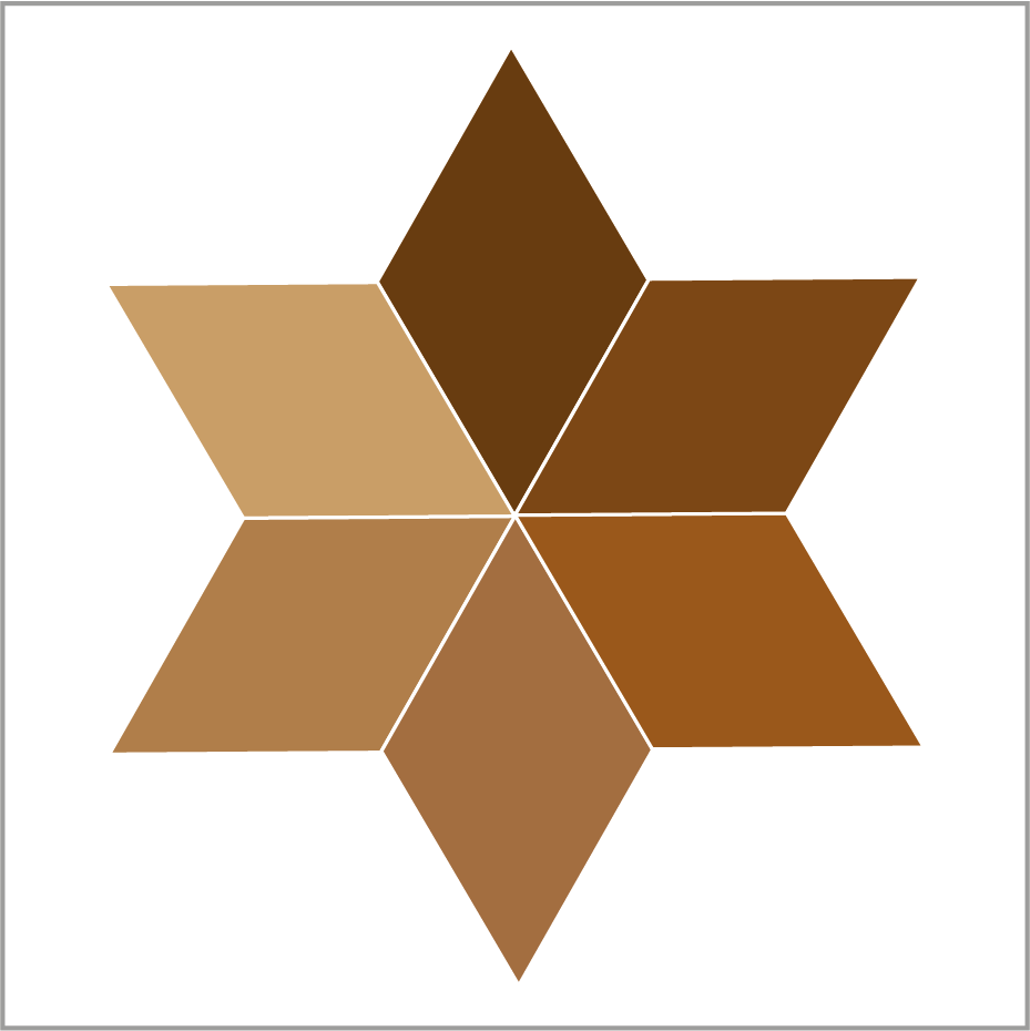 <!-- 008 -->Brown
