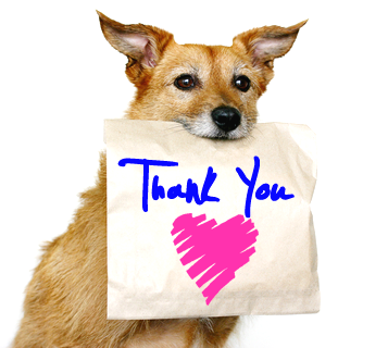 dog-with-brown-paper-bag-thankyou