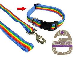 Wag & Walk Rainbow Stripe