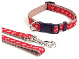 Wag & Walk Red Beige Collar