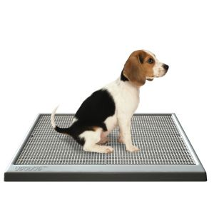 UGODOG - Dog Training Potty