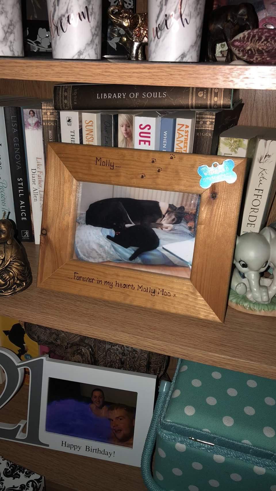 Molly dog photo frame