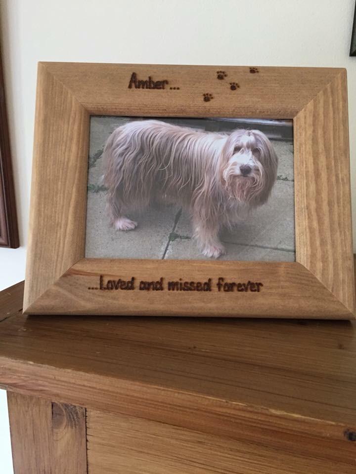 Dog photo frame personalised