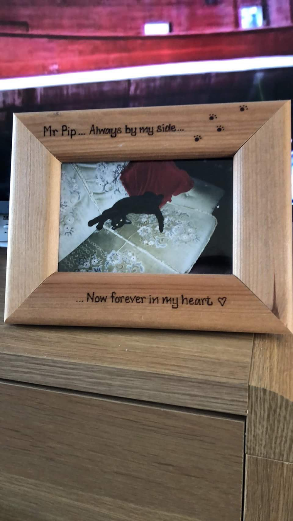 Cat personalised photo frame