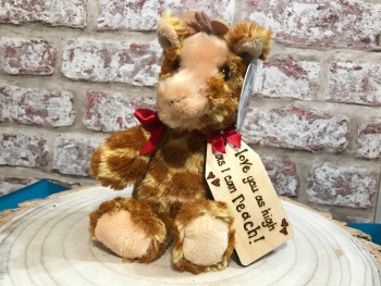 "Love You As High As I Can Reach - Personalised 8"" Giraffe Plush"