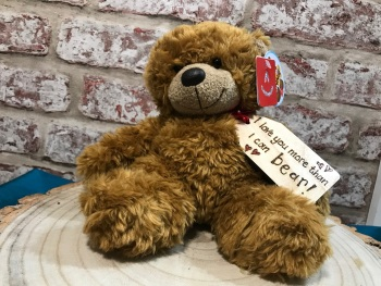 "Personalised 9"" Teddy Bear Plush - Love You More Than I Can Bear"