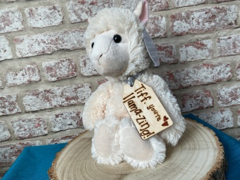 "Design Your Own - 12"" Llama Plush With Engraved Tag"