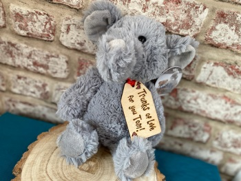 "Trunks Full Of Love - Personalised 12"" Elephant Plush"