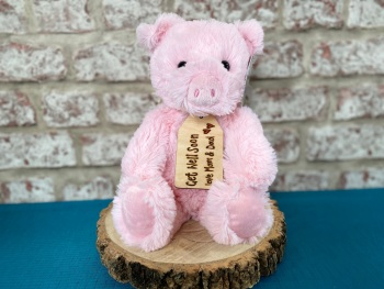 "Get Well Soon - 12"" Pig Plush With Engraved Tag"