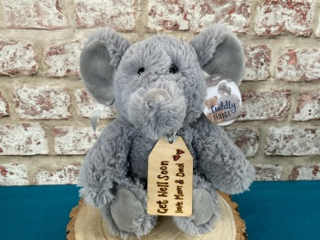 "Get Well Soon - Personalised 12"" Elephant Plush"