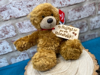 "My Feelings For You Are Unbearable - Personalised 9"" Teddy Bear Plush"
