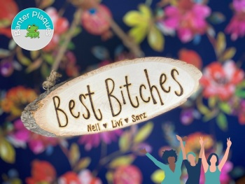 Best Bitches   Funny Banter Personalised Wooden Plaque