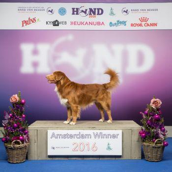 Kyro Amsterdam Winner 2016