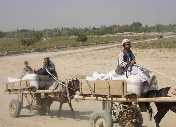 Afghanistan man on cart