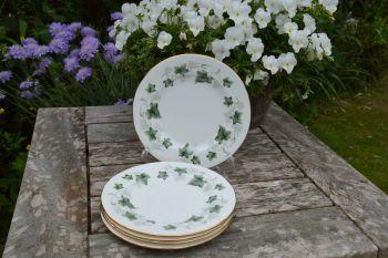 Set of 5 Duchess Fine Bone China Tea Plates - Ivy Pattern