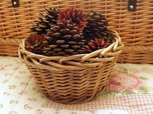 Sussex gathered Pine Cones in a Vintage Basket