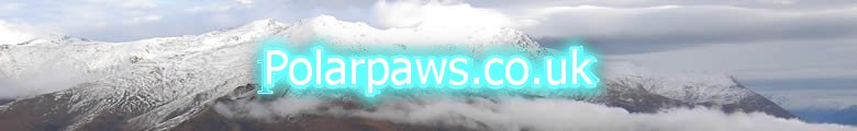 www.Polarpaws.co.uk, site logo.