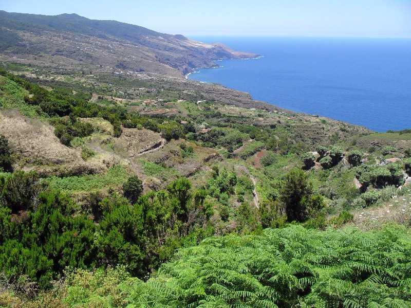 La Tosca Walk GR130 La Palma