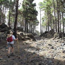 GR130 day 6 ann pine trail