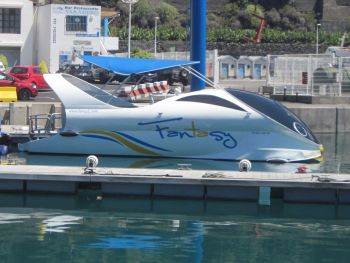 Fantasy boat tours, Tazacorte whale watching and dolphins, la palma