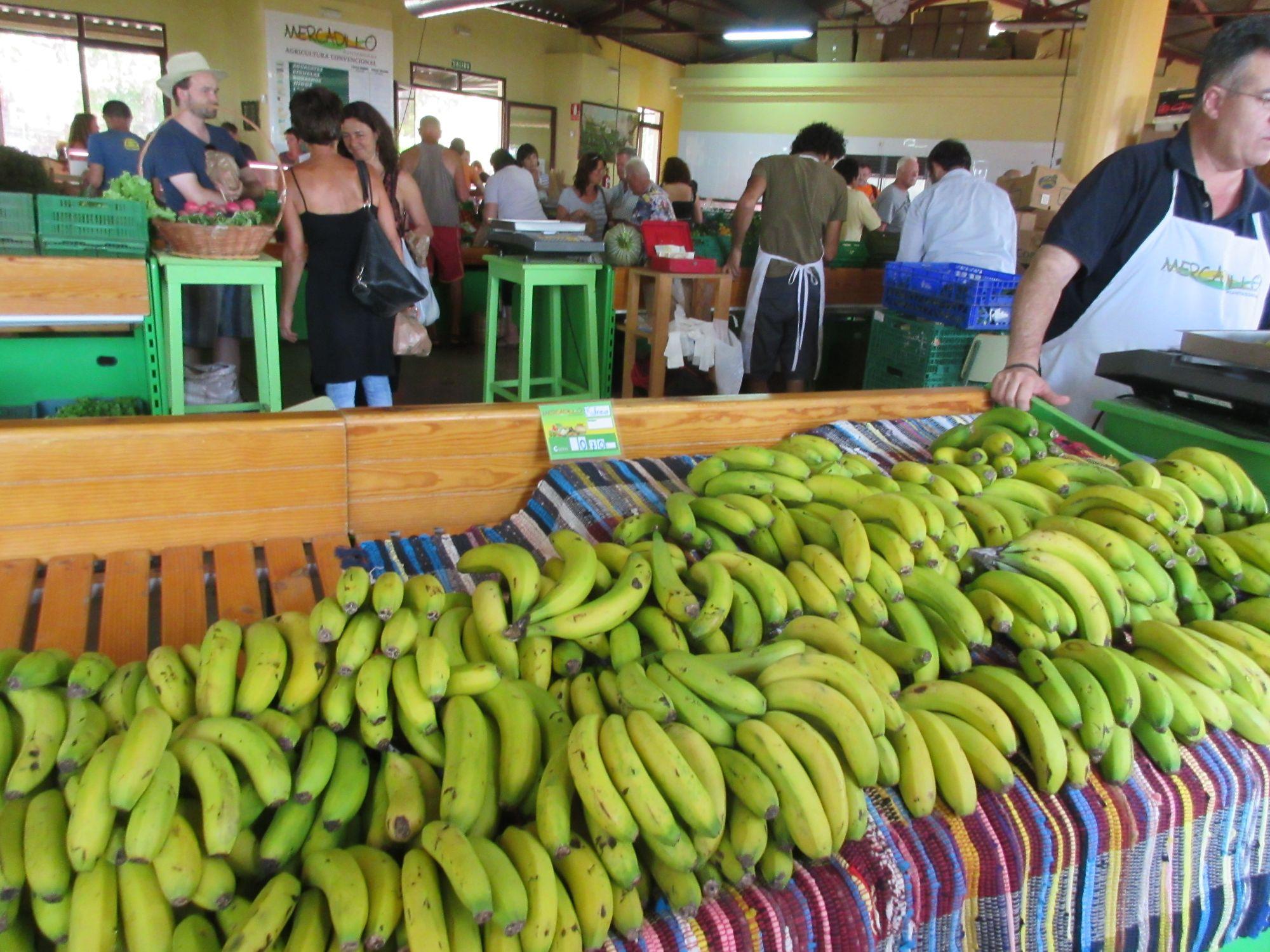 Puntagorda market La Palma bananas