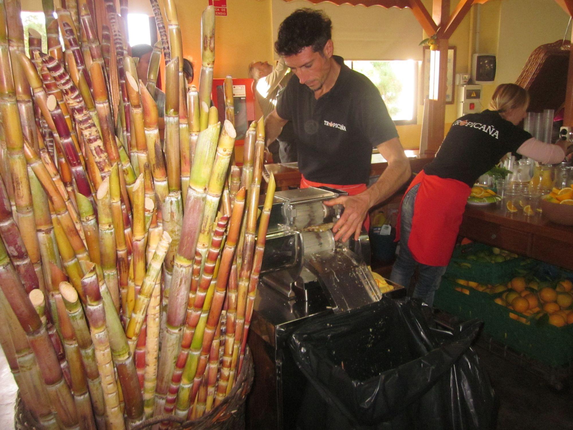 La Pamla Mercadillo Market Puntagorda bamboo juice