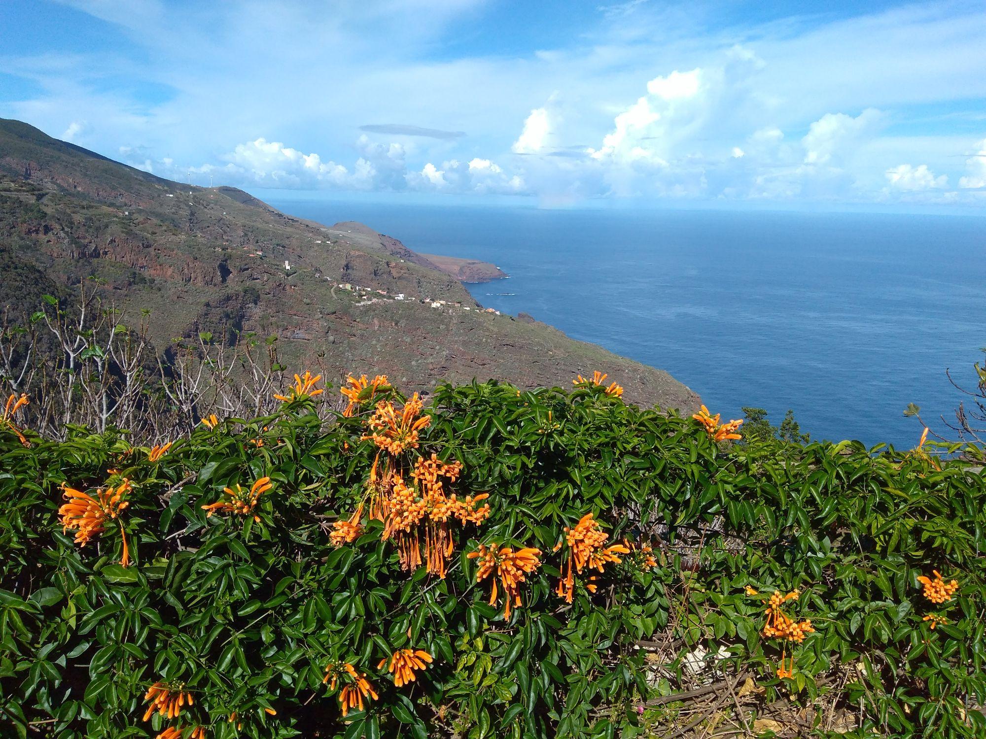 The north coast of Garafia