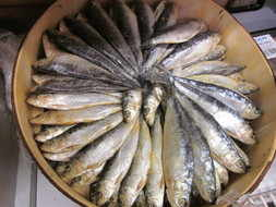 around la palma - food, sardines