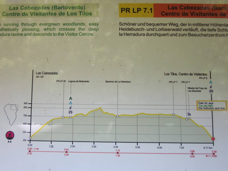 Walking Los Tilos walk profile