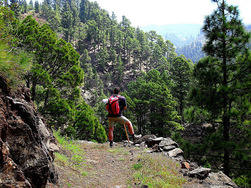 trekking and walking gr130 la palma