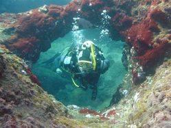 SCUBA diving on La Palma Canaries