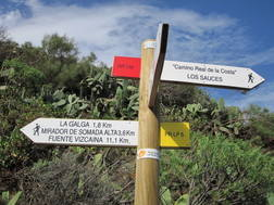 For walking and trekking, the GR130 Camino Real is nearby