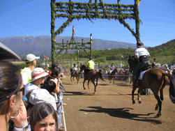 fiestas horse reacing anantonio