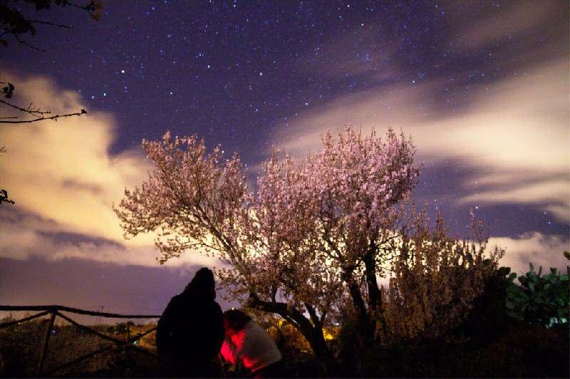 Casa El Rincon starry night
