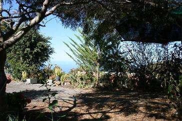 Casa Ines garden 2
