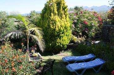 Casa Ines garden 3