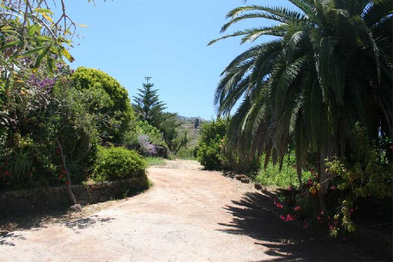 Casa Jocamo driveway