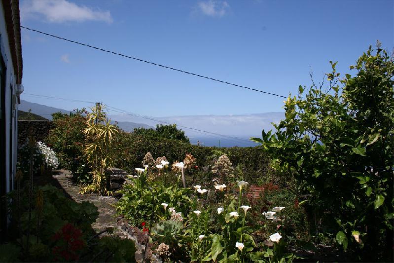Cosa Rosa Maria garden
