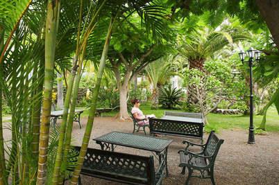Apartments Los Llanos garden 2