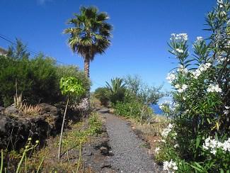 casa victoria garden path