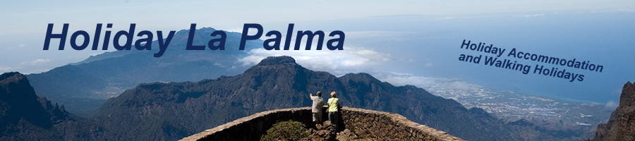 www.Holiday-lapalma, site logo.