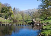 Stepping Stones Ambleside  (9584 )