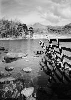 Photographic Prints - Black & White
