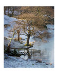 Loughrigg Tarn in the Snow -  Photographic Print