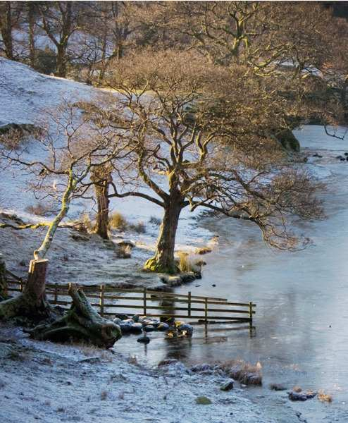 loughrigg-tarn in the snow
