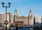 Royal Liver Buildings (9879)