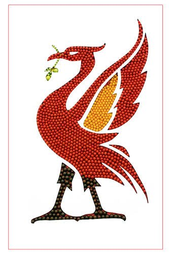 L004-Tomato-Liver-bird