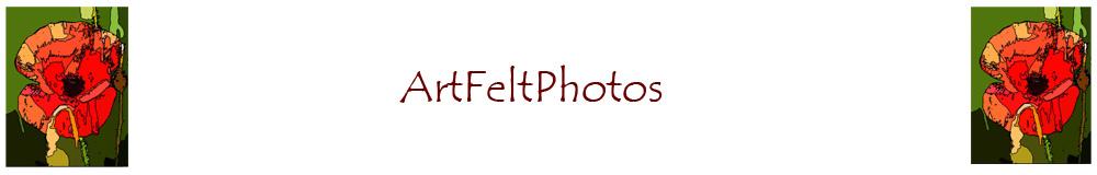 ArtFeltPhotos, site logo.
